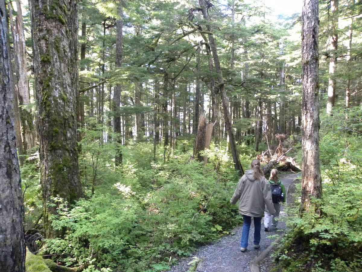 Hiking the Rainforest Trail on Douglas Island