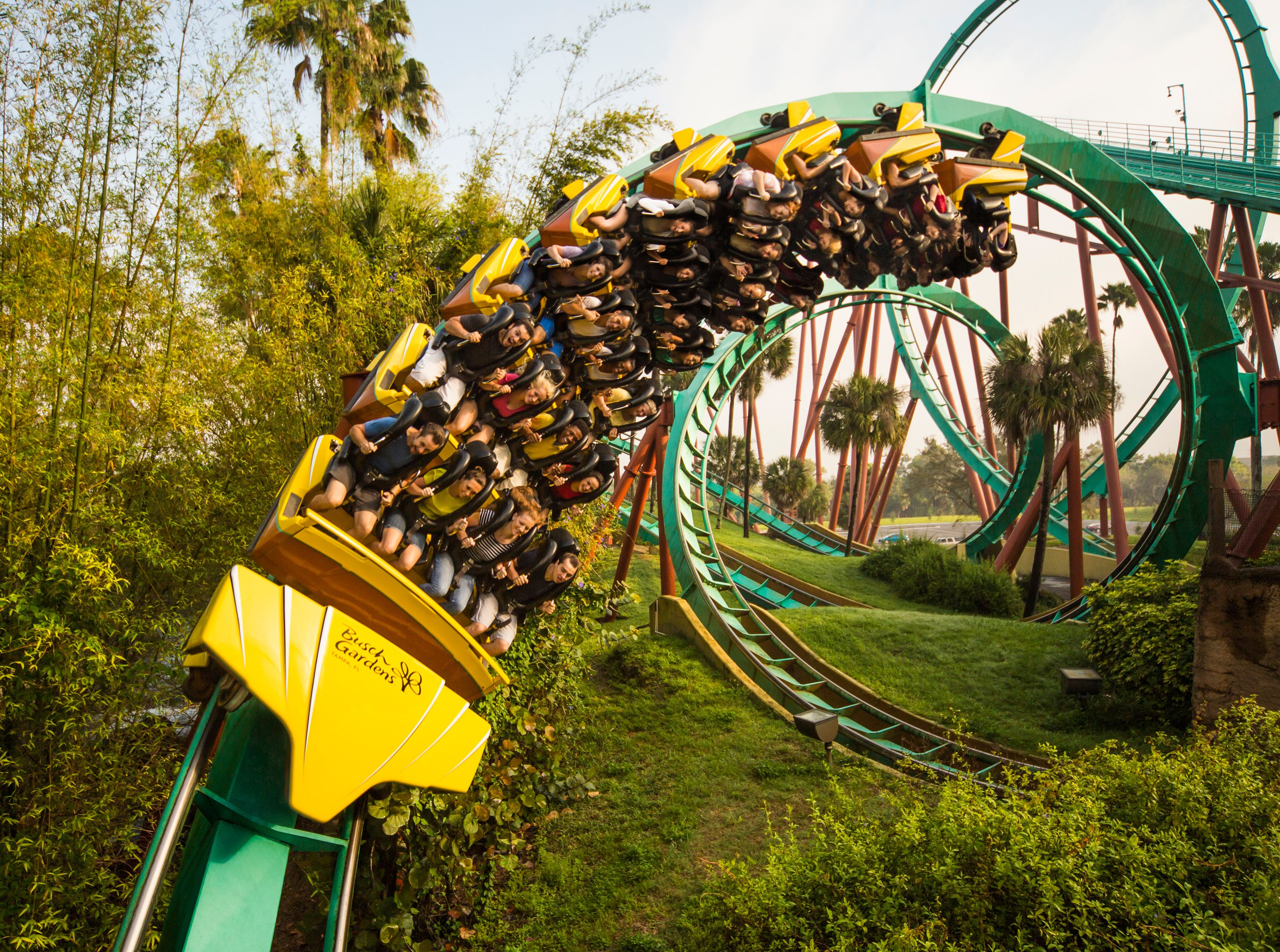 These Are the 10 Best Roller Coasters in Florida