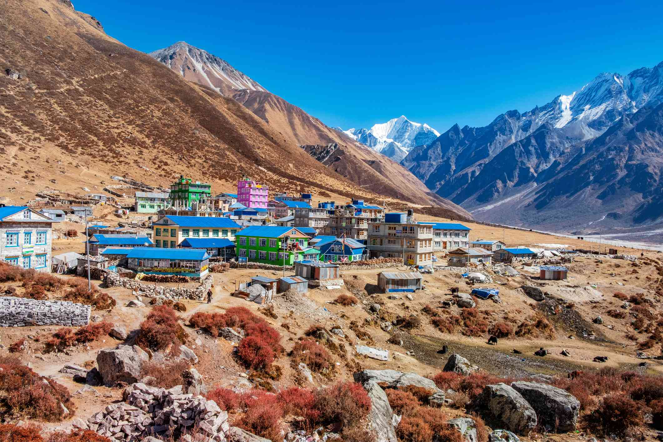 blue roofed buildings surrounded by mountains