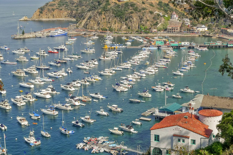 Kết quả hình ảnh cho du lịch đảo catalina