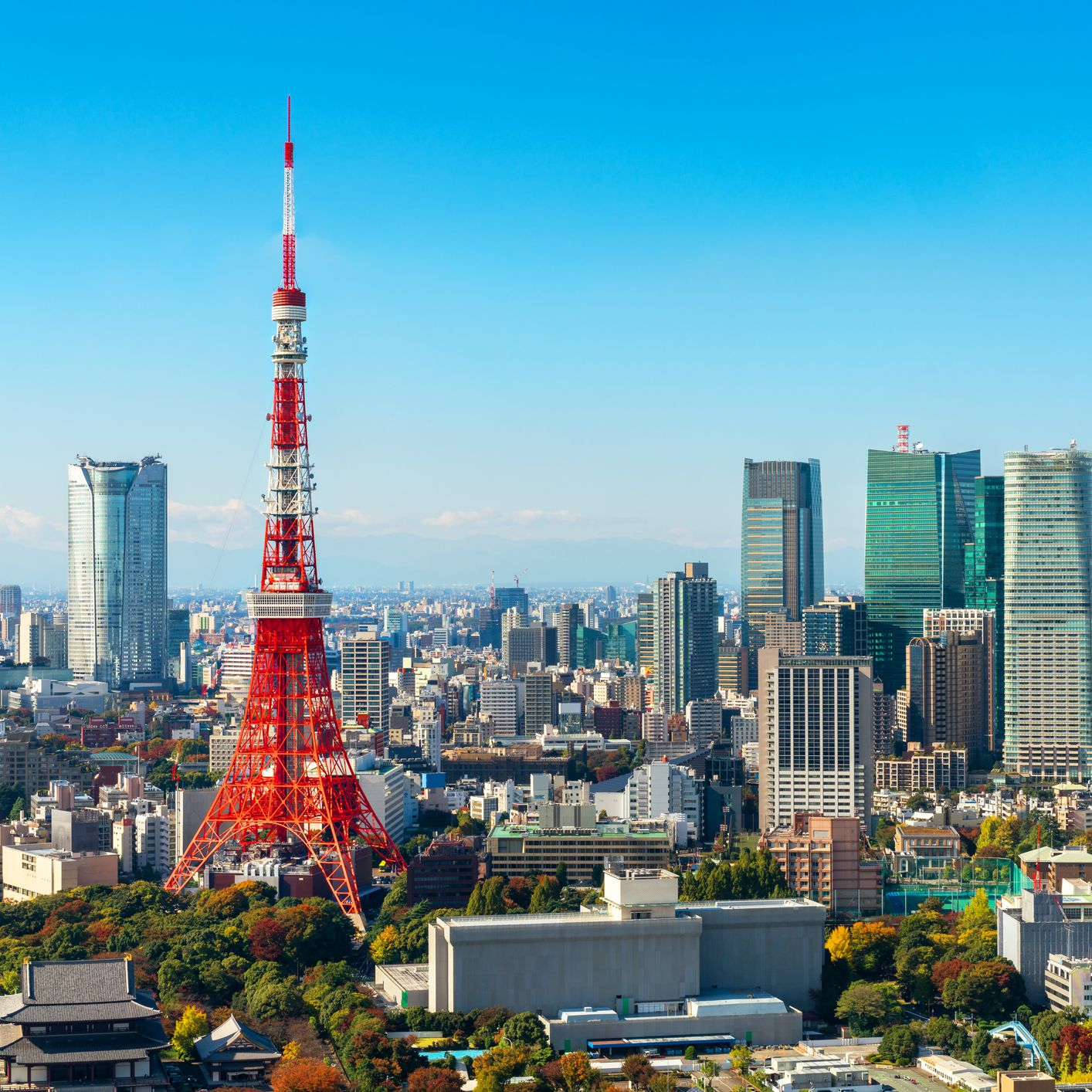 48 Hours in Tokyo: The Perfect Itinerary