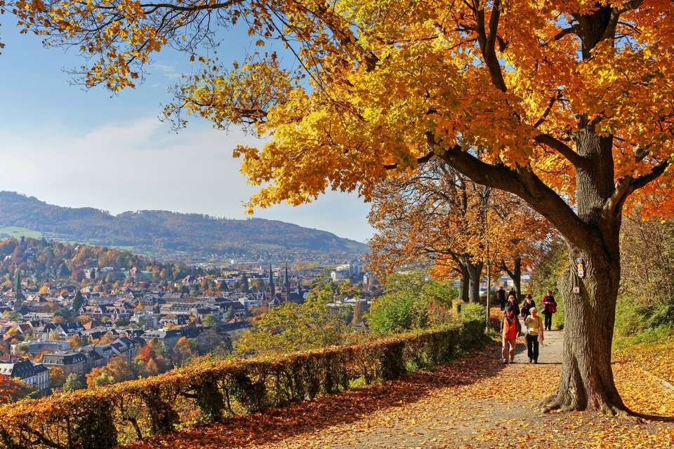 Freiburg in Autumn