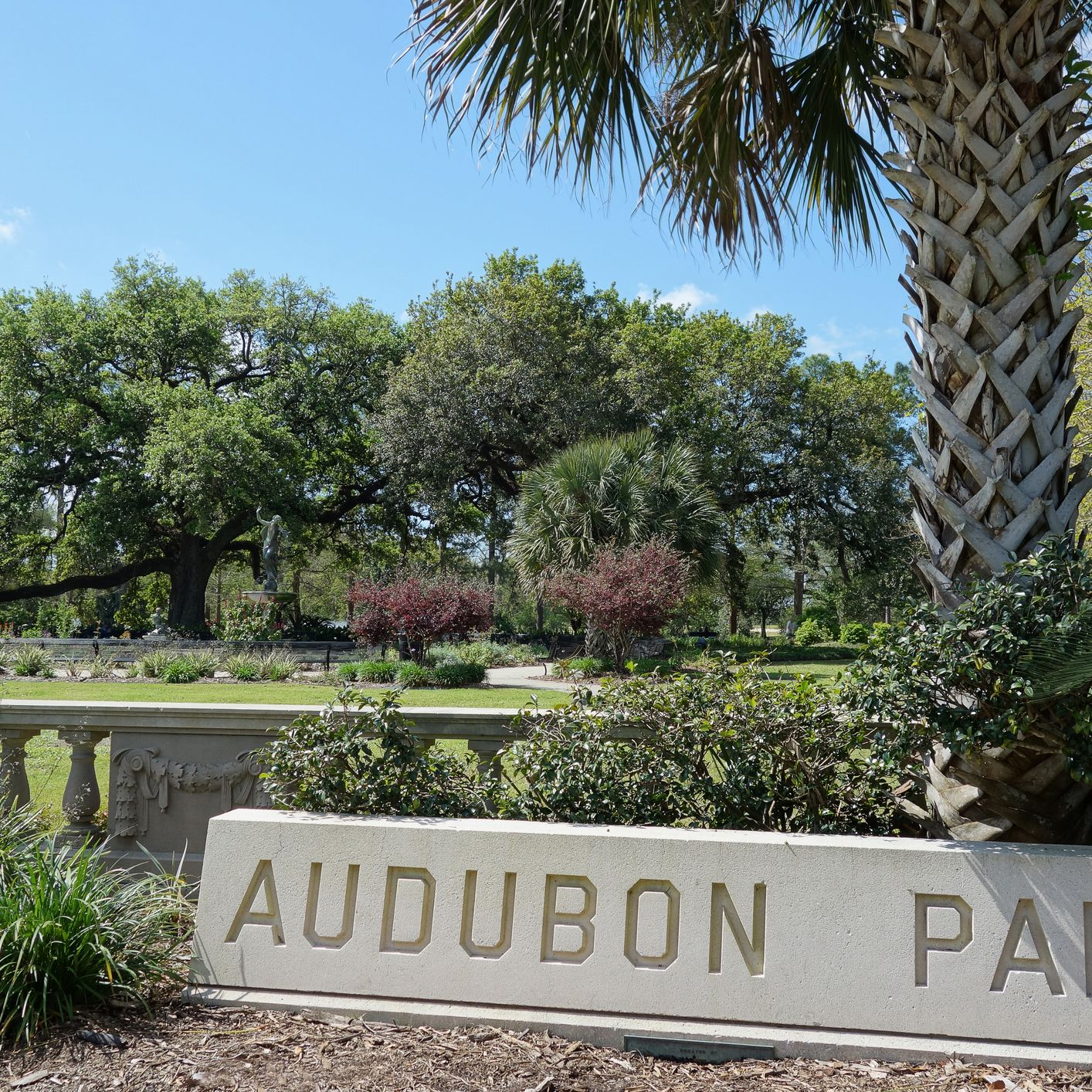 Audubon Park in New Orleans: The Complete Guide