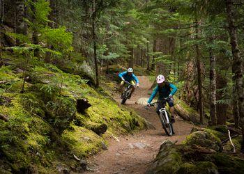 Couple mountain biking through a lush forest