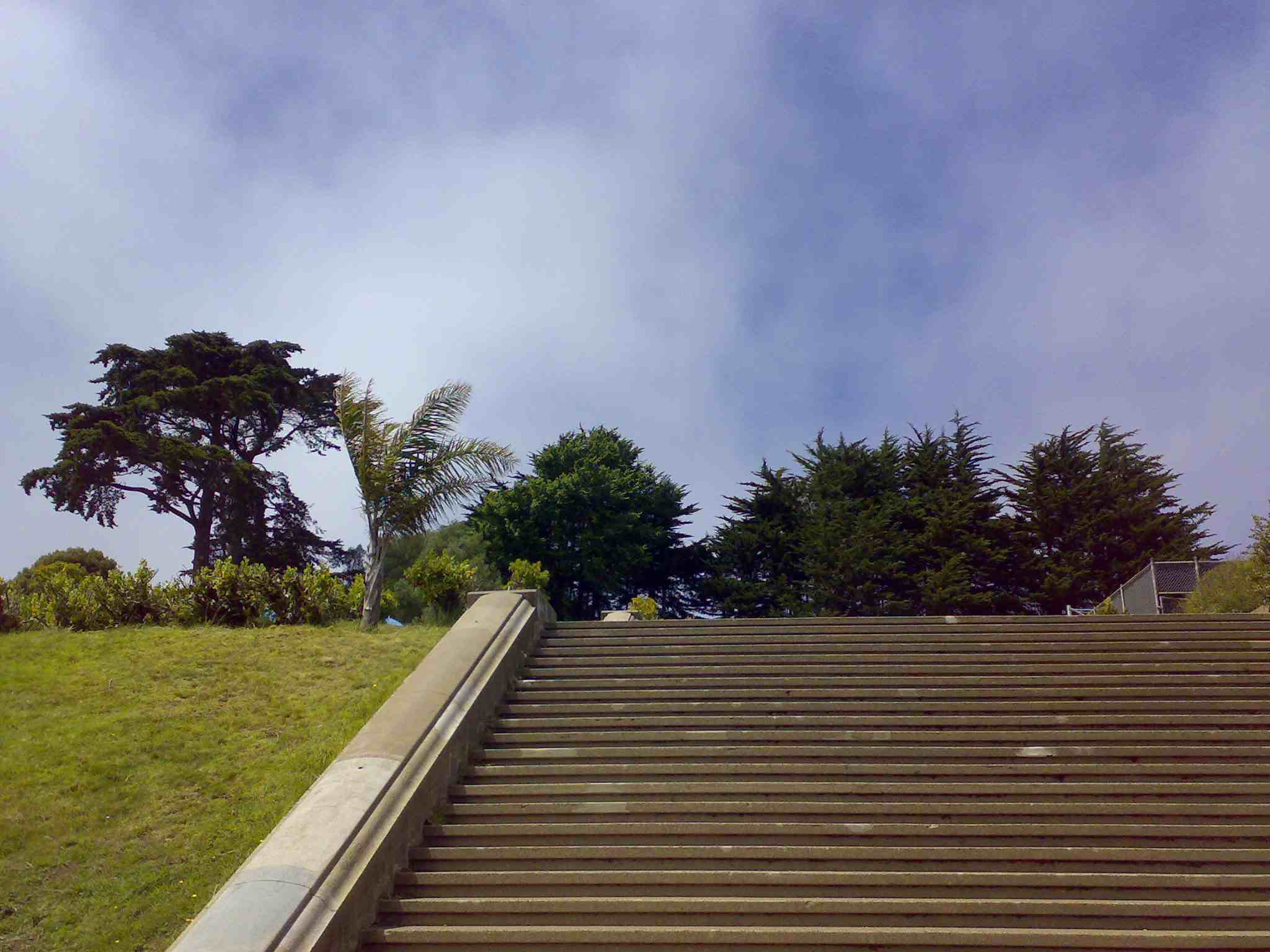 Steps of Alta Plaza Park in Pacific Heights San Francisco