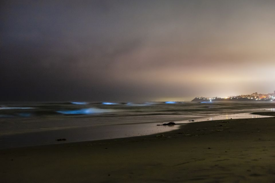 May 2018 Bioluminescent Red Tide in San Diego County