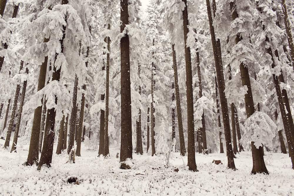Winter hiking in Maine