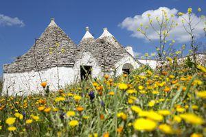 trulli in the countryside near Alberobello