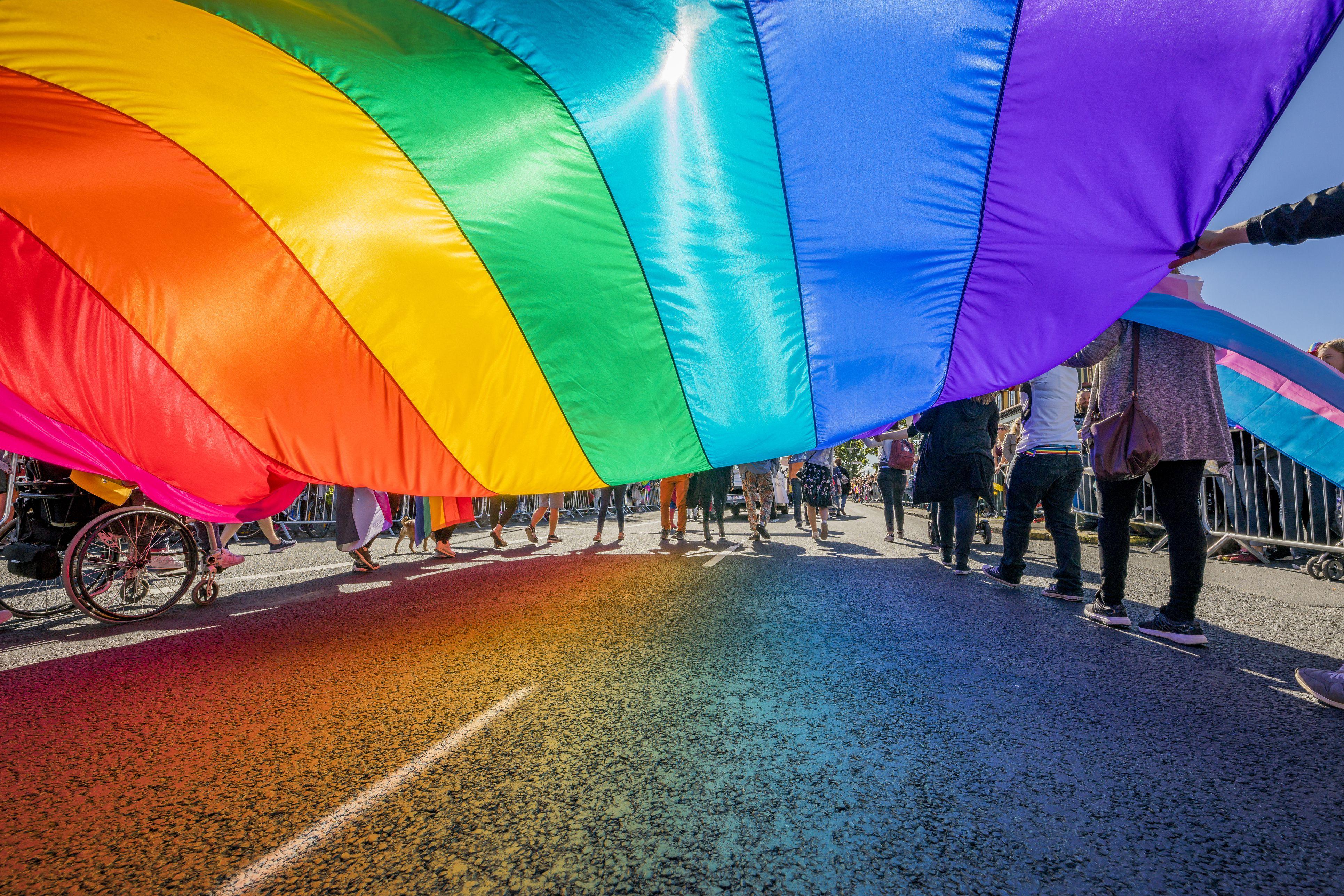 Gay pride calendars