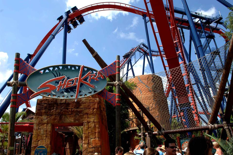 Busch gardens 39 sheikra and griffon coaster reviews - Roller coasters at busch gardens ...