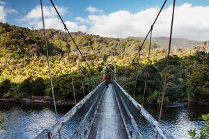 person in red on the bridge over Kohaihai River, Kahurangi National Park, New Zealand