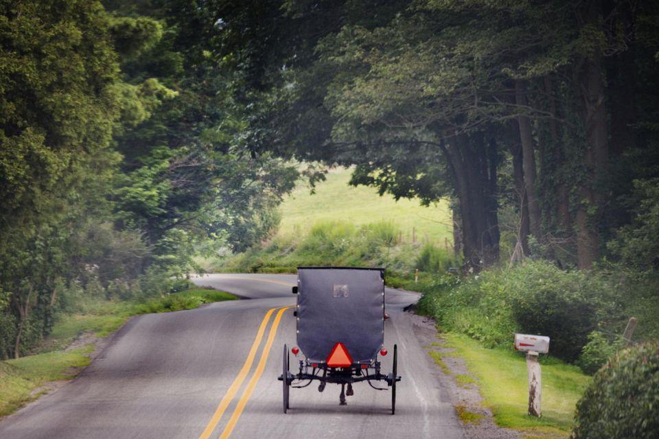 Transporte Amish en carretera rural