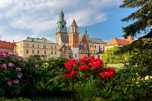 Flowers in front of building in Krakow, Poland