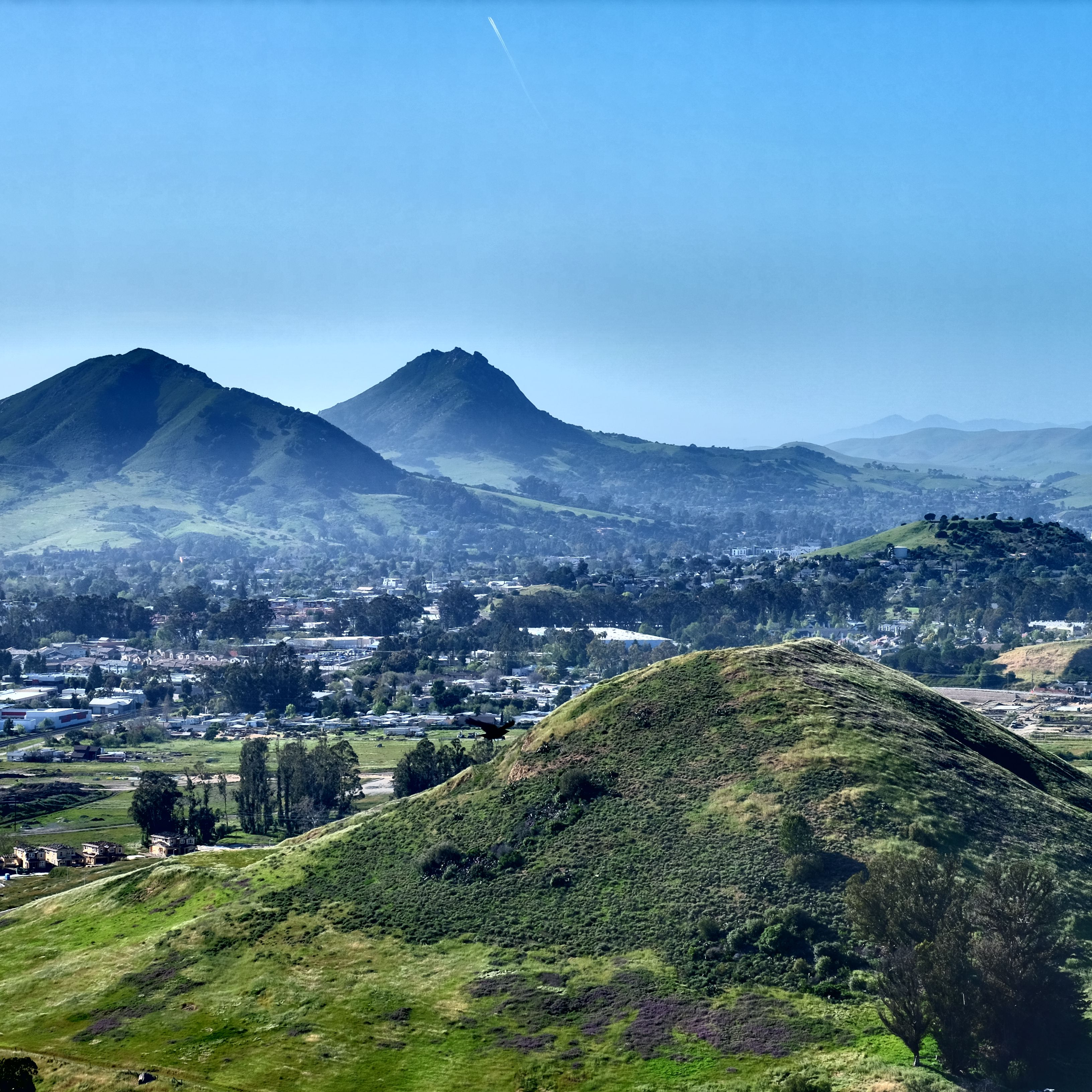 12 Things to Do in San Luis Obispo