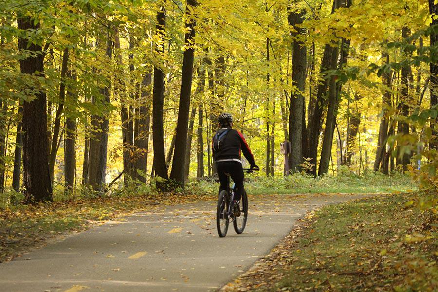 Biking in Kensington