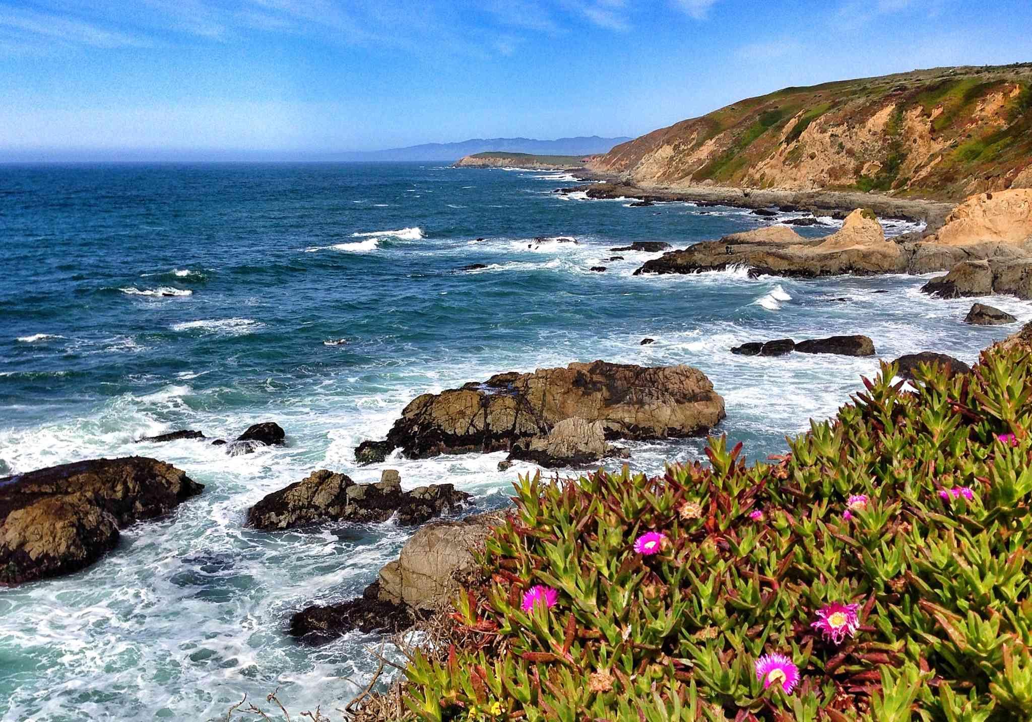 Sonoma Coast from the Bodega Bay Trailhead