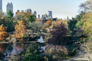 Gapstow Bridge In Central Park in New York City, NY