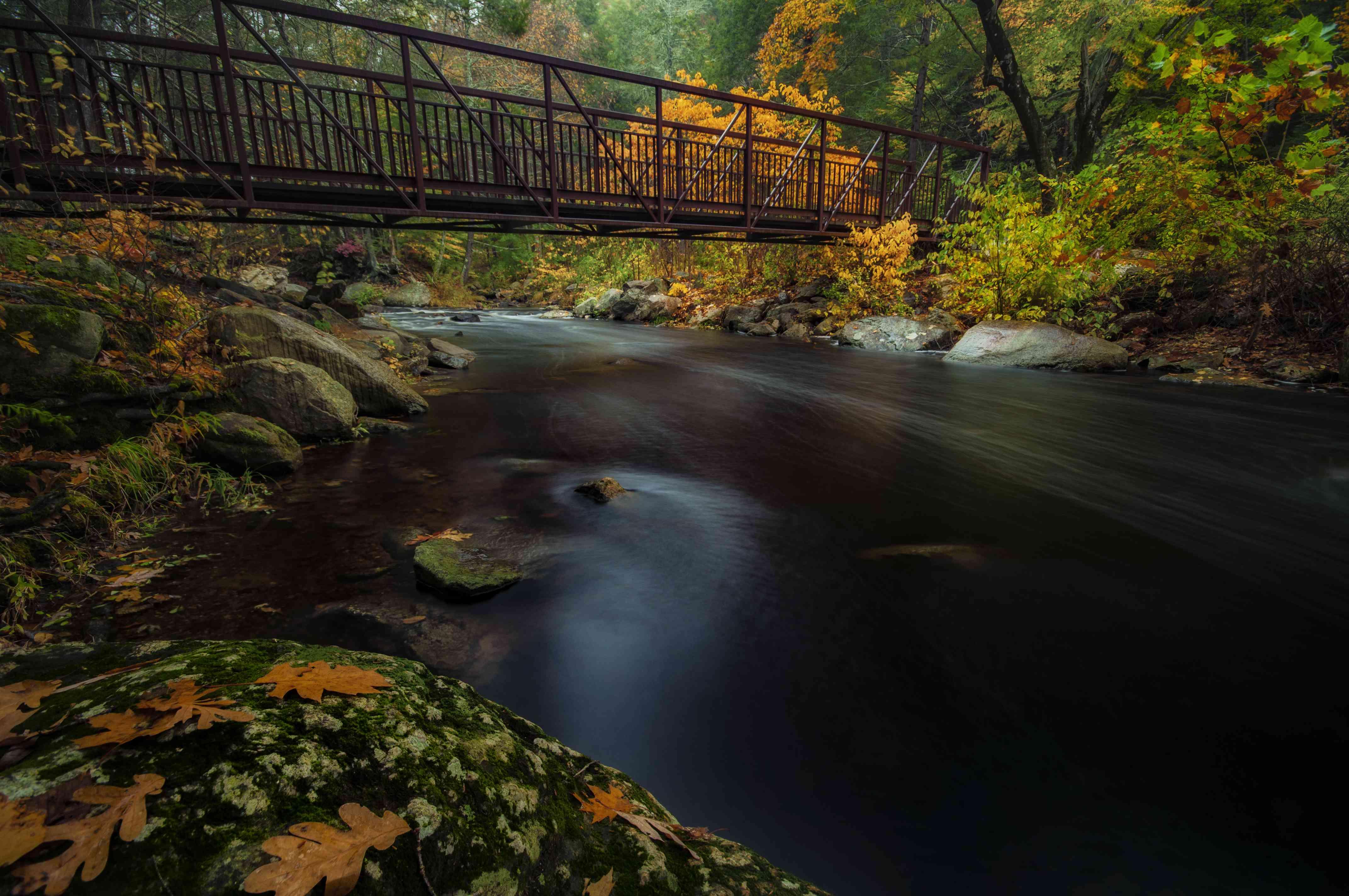 Bridge in Mashamoquet Brook State Park in fall, Connecticut