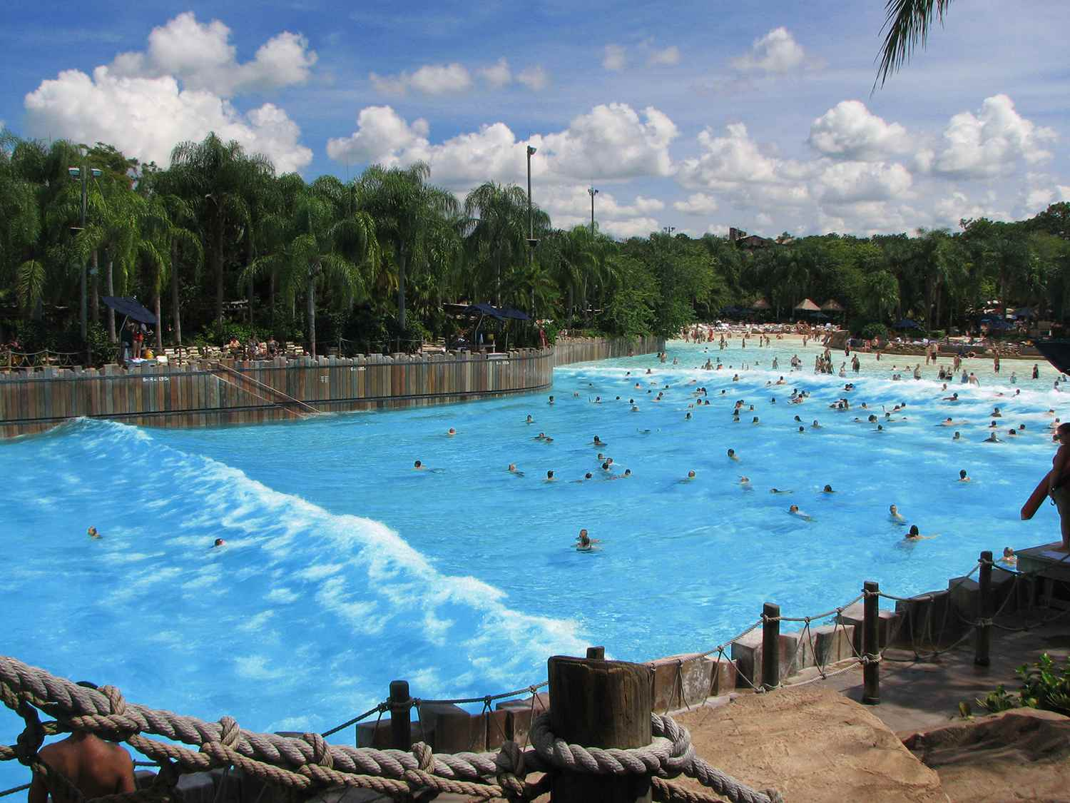 Overhead view of people swimming in the Typhoon Lagoon