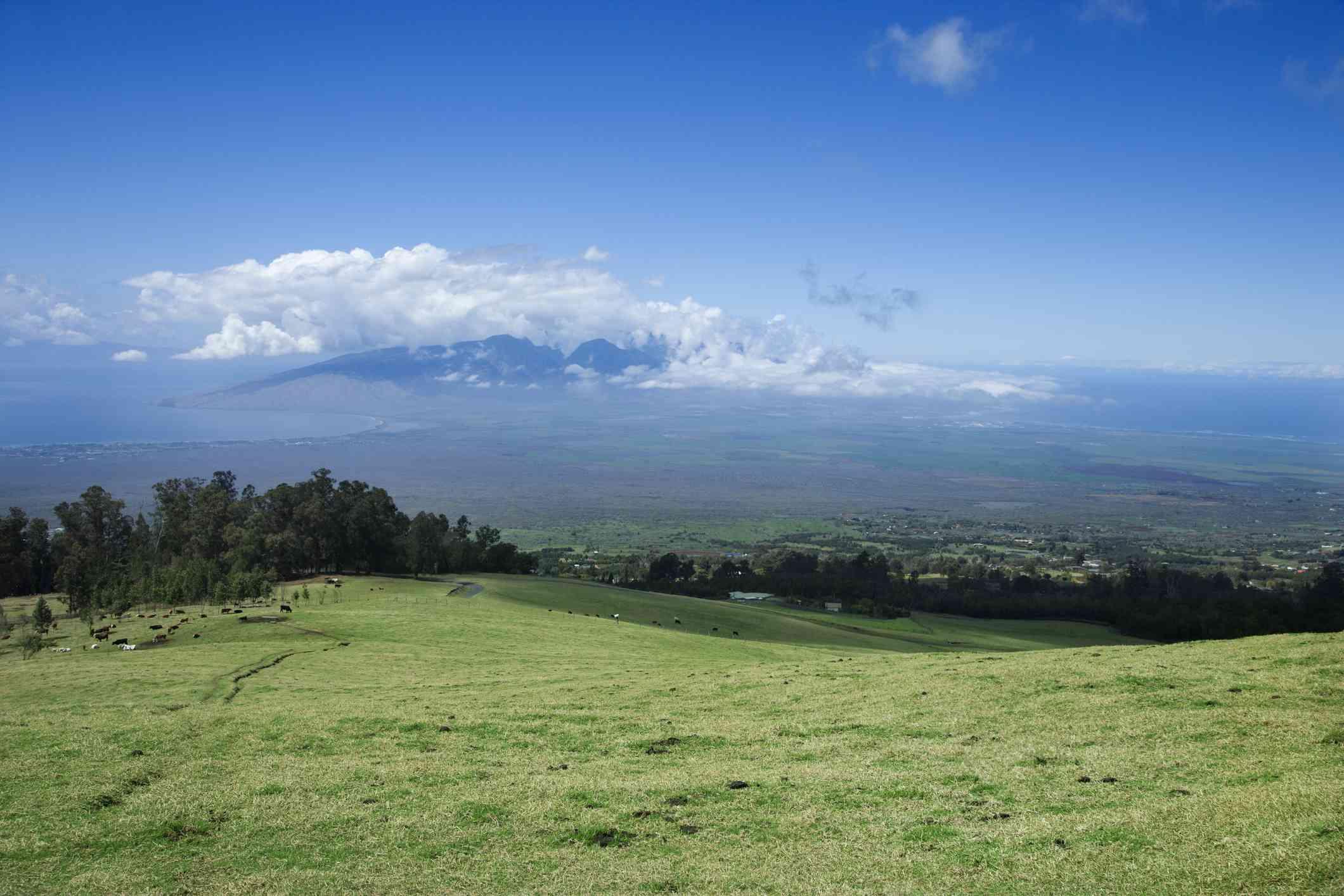 Polipoli on Maui
