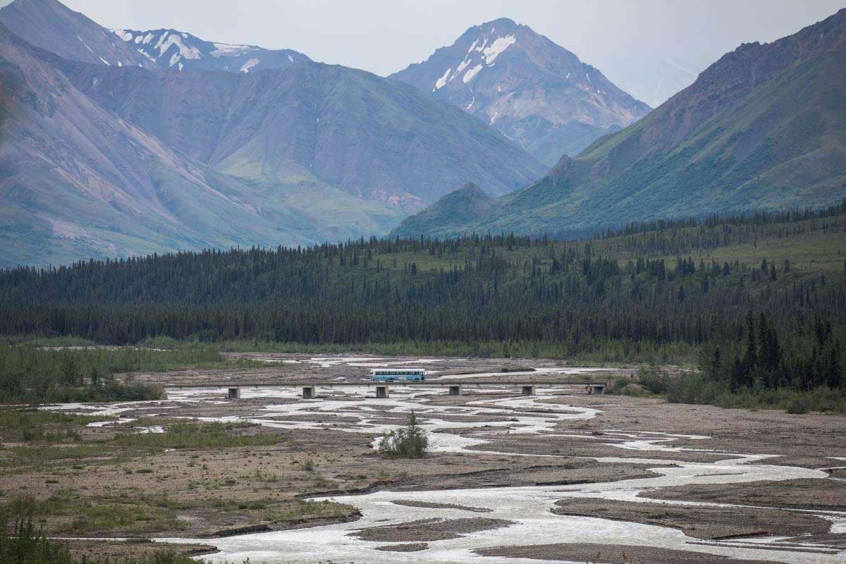 Denali Back Country Adventure, Pursuit