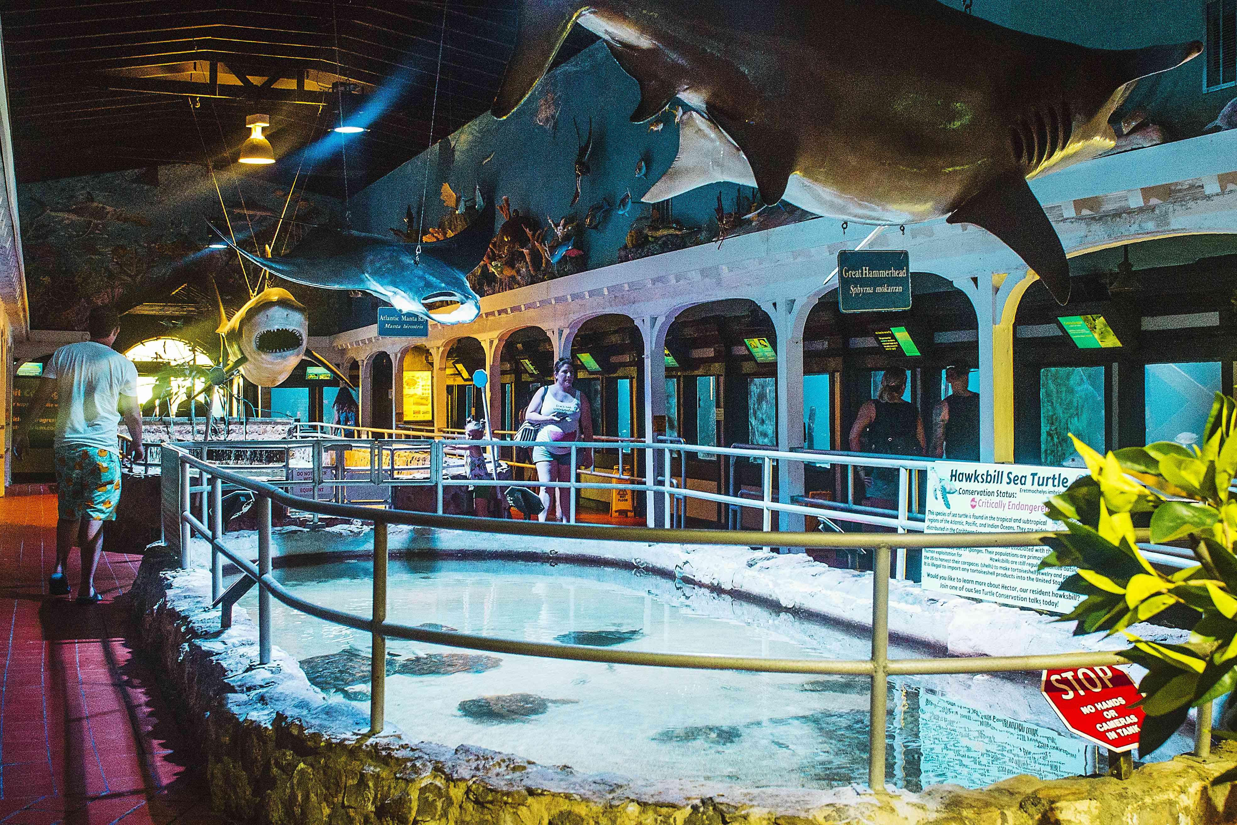 Inside the Key West Aquarium