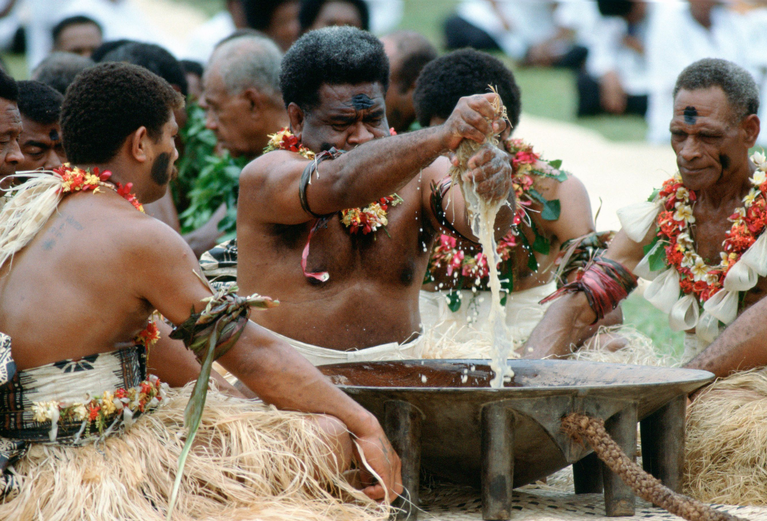 All About Kava, Fiji's National Drink