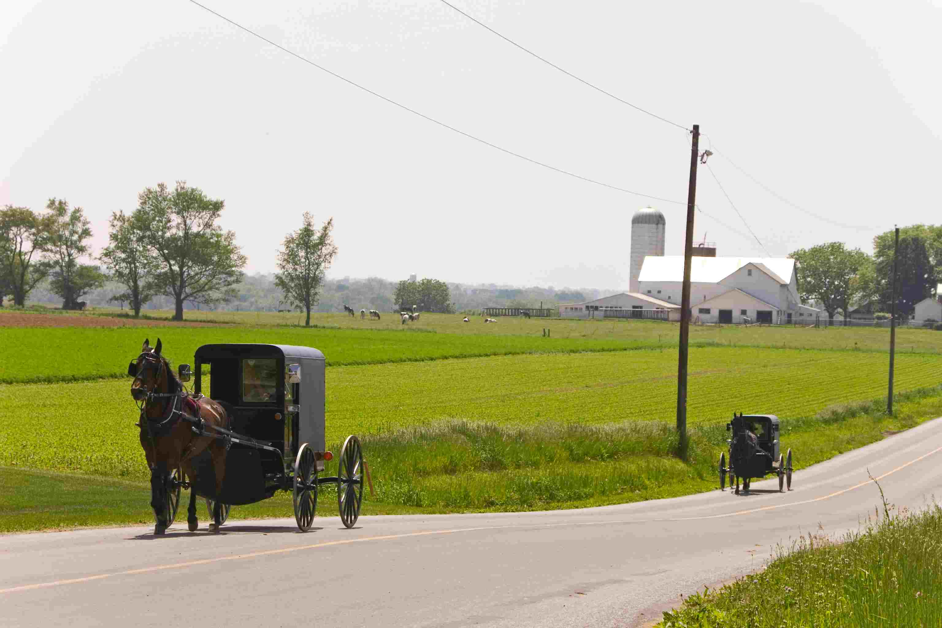 History of the Amish Settlements and Orders in America