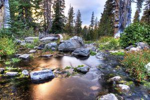 Mount Rose Wilderness near Lake Tahoe, Nevada.