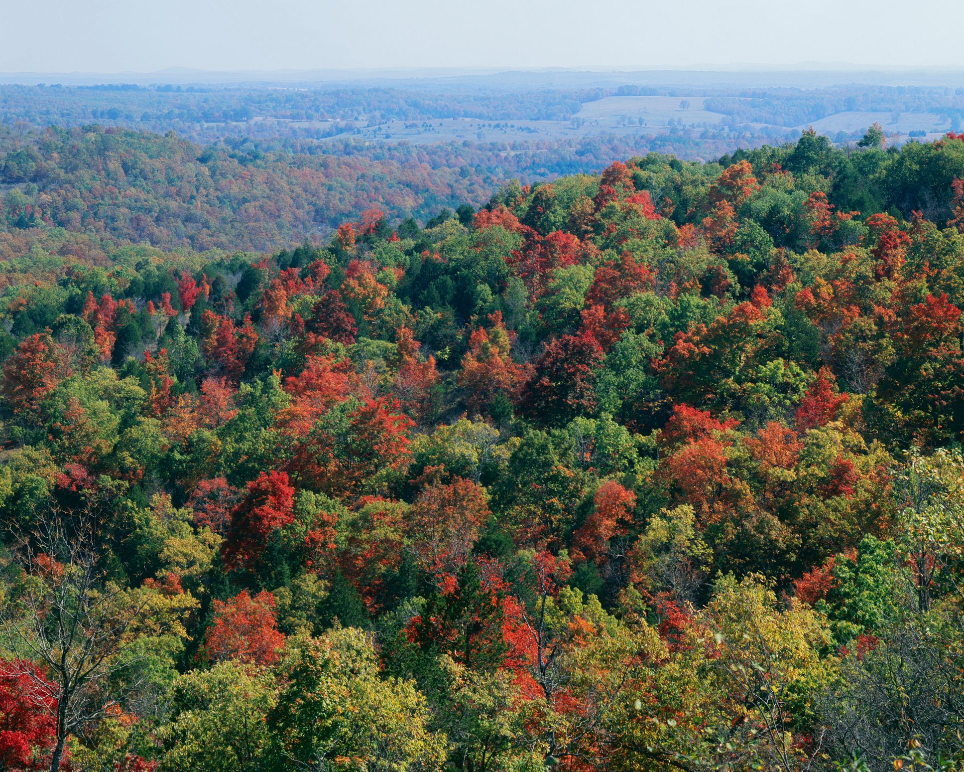 Mark Twain National Forest in Autumn, Missouri, USA