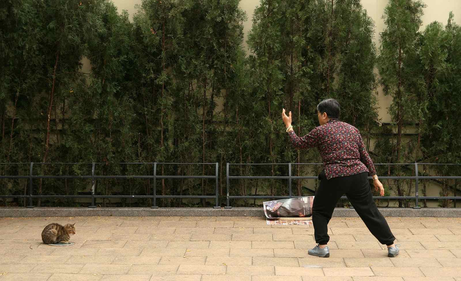 Woman Practicing Tai Chi Outdoors