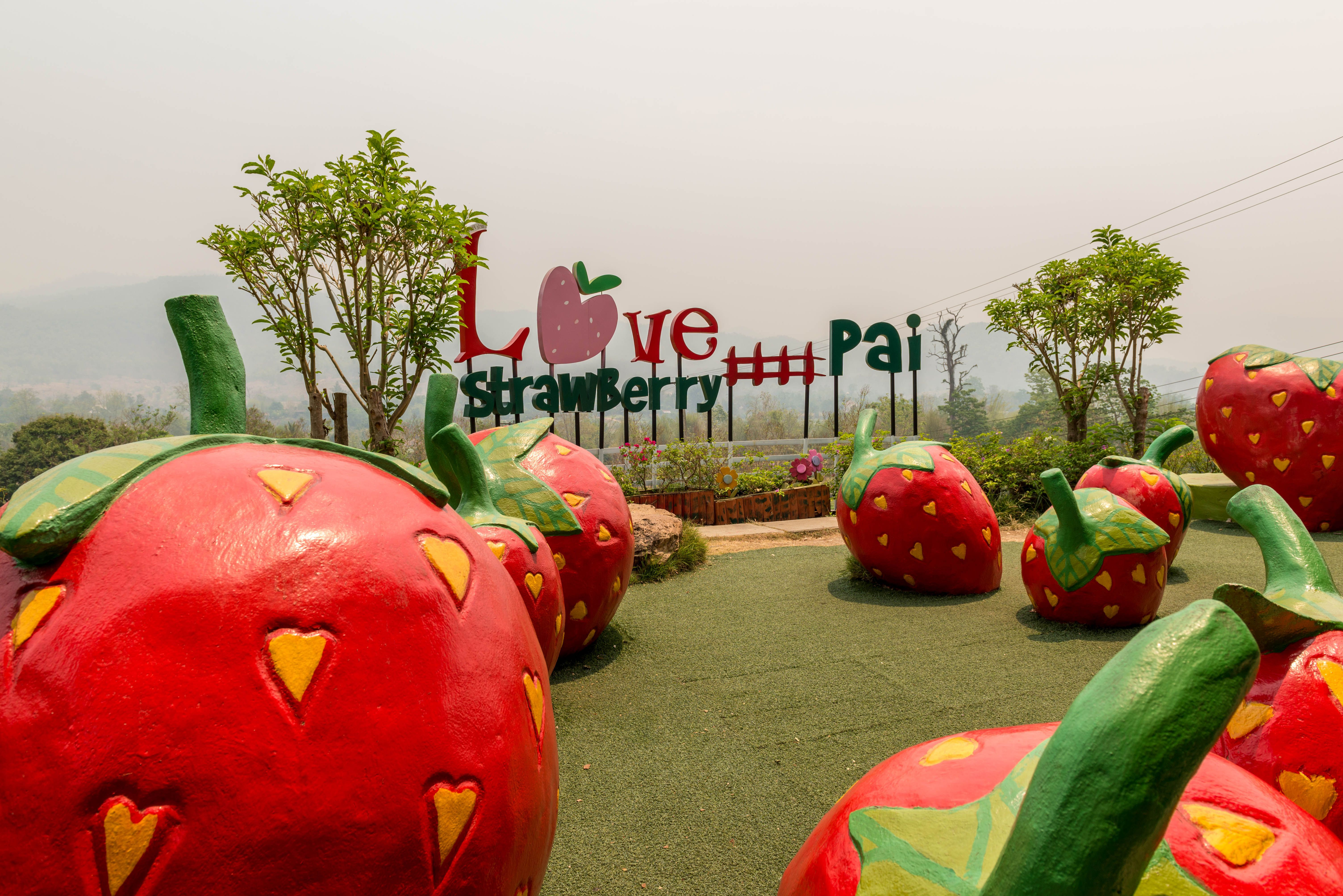 Giant artificial strawberries at Love Strawberry in Pai Thailand