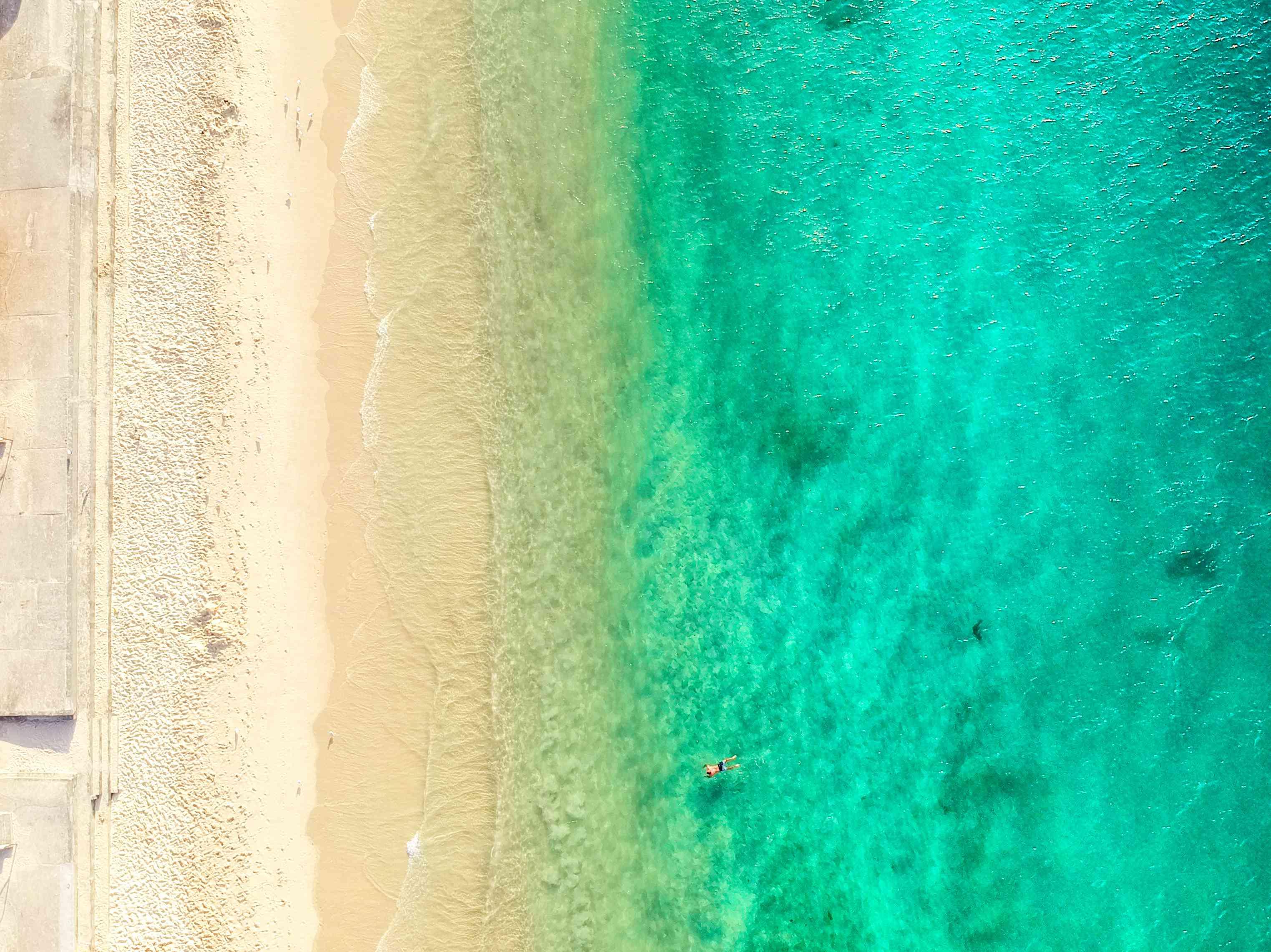 Aerial photo of Sydney - Shark Beach