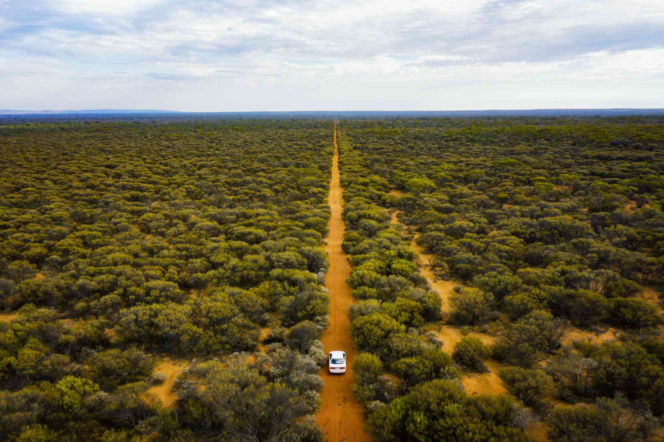 Driving through the bush land