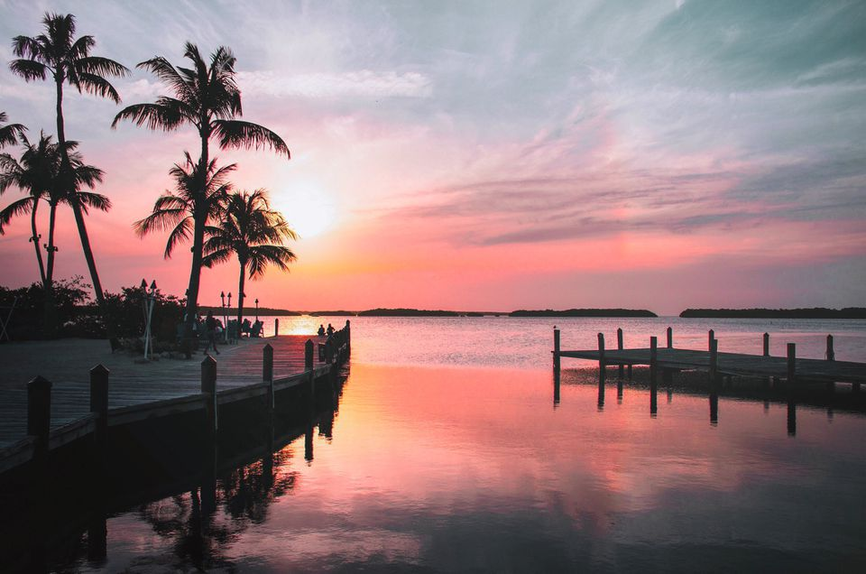 Florida Day Trips for Locals and Tourists