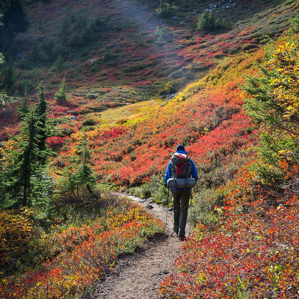 The Best Places to See Fall Foliage in Western Pennsylvania