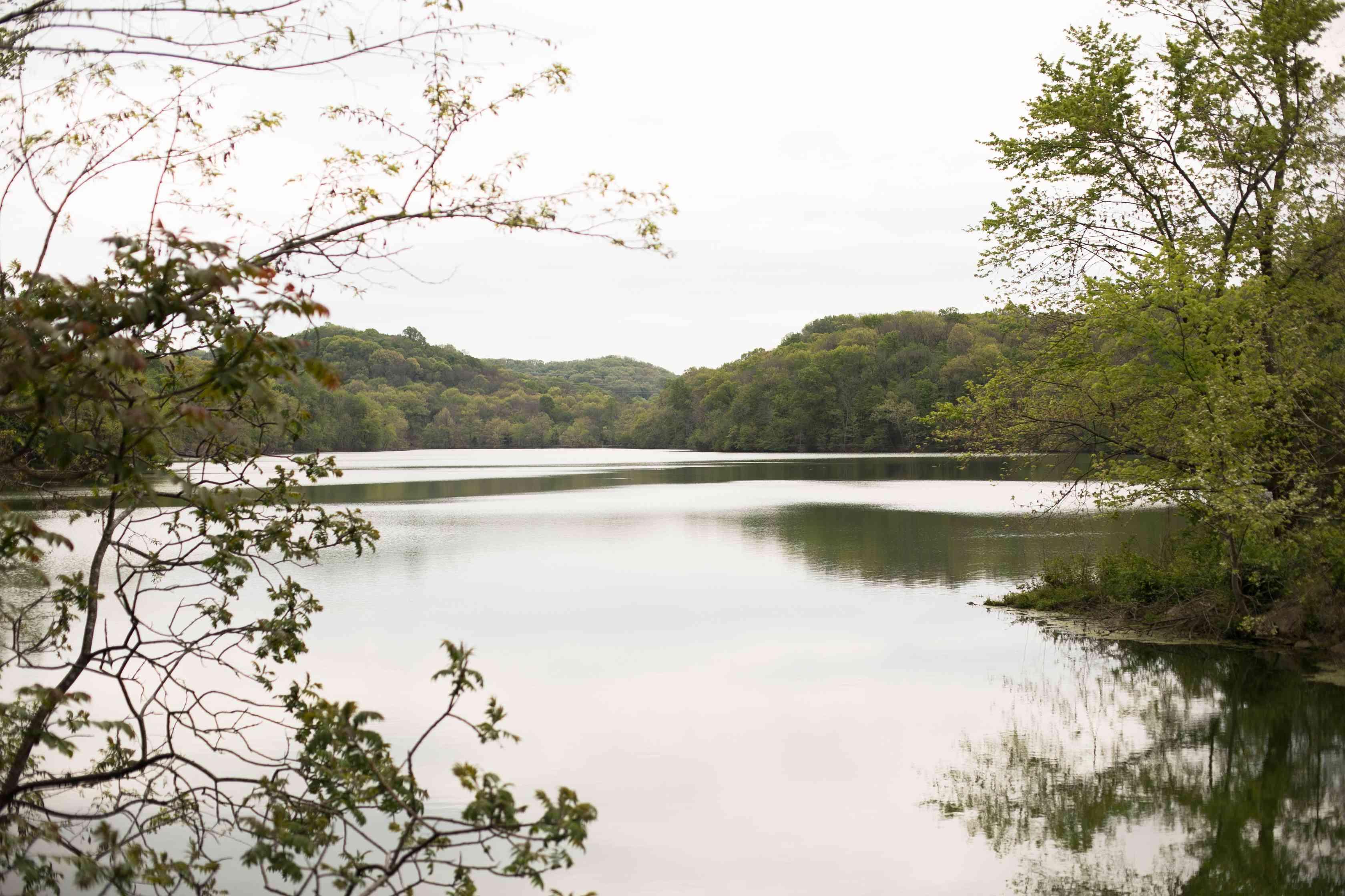 Radnor Lake State Park in Nashville, TN