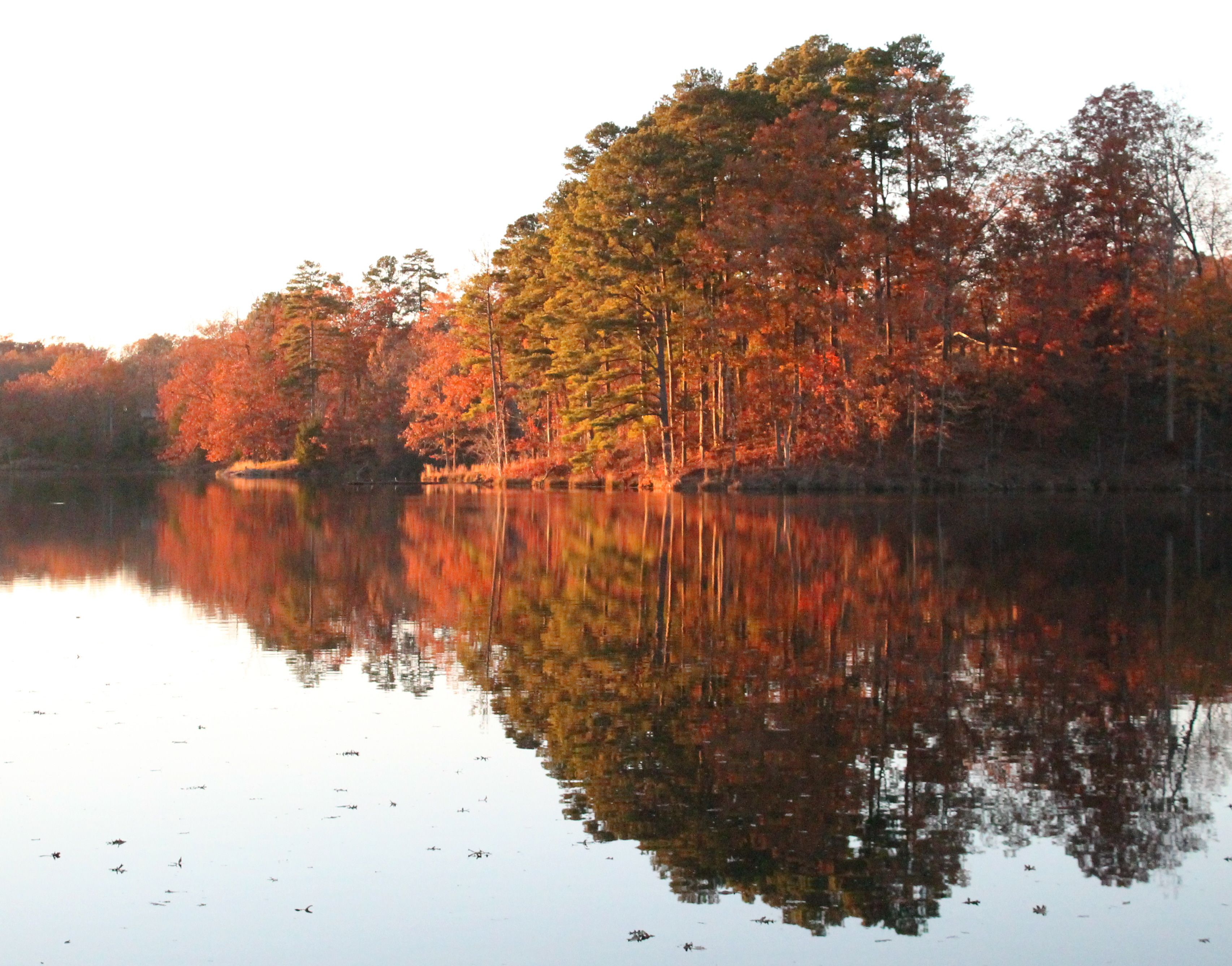 Tombigbee State Park, Tupelo, Mississippi