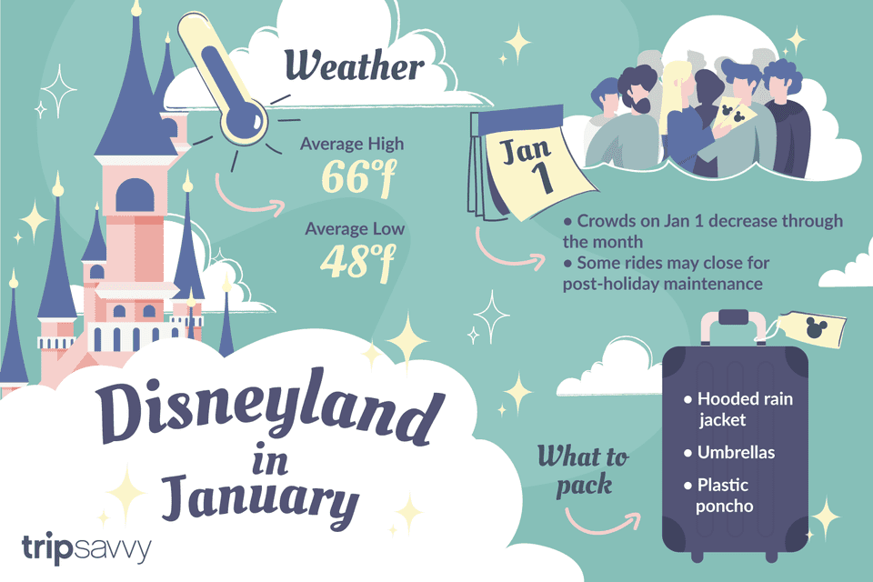 Disneyland in January