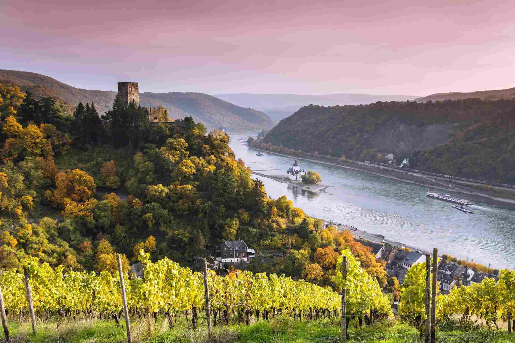 Germany, Rhineland-Palatinate, Kaub, Landscape with vineyard and Burg Gutenfels