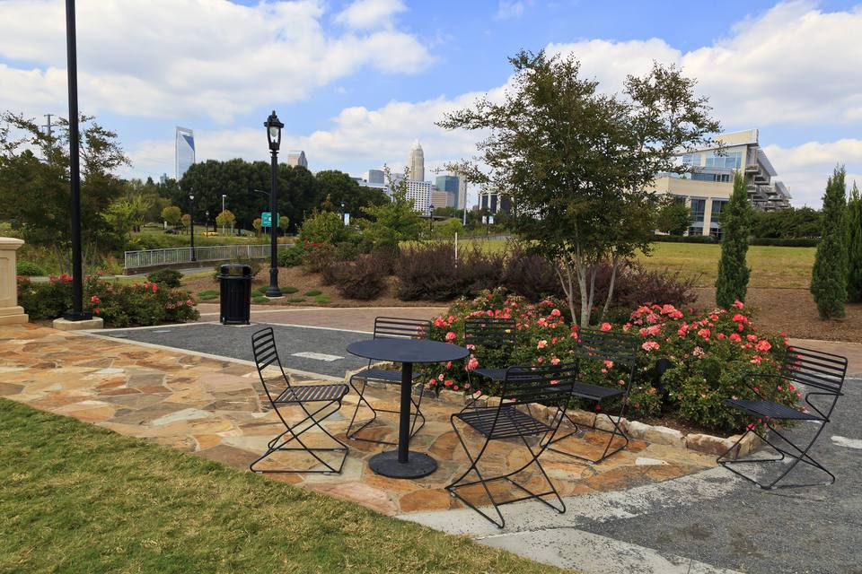 Plants, shrubs, and trees in Charlotte's midtown park