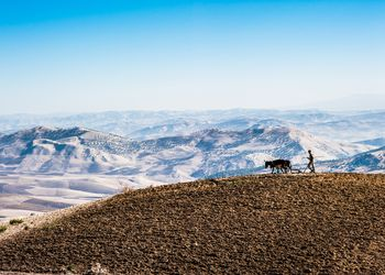 Farmer plowing a field in the Moroccan Atlas Mountains