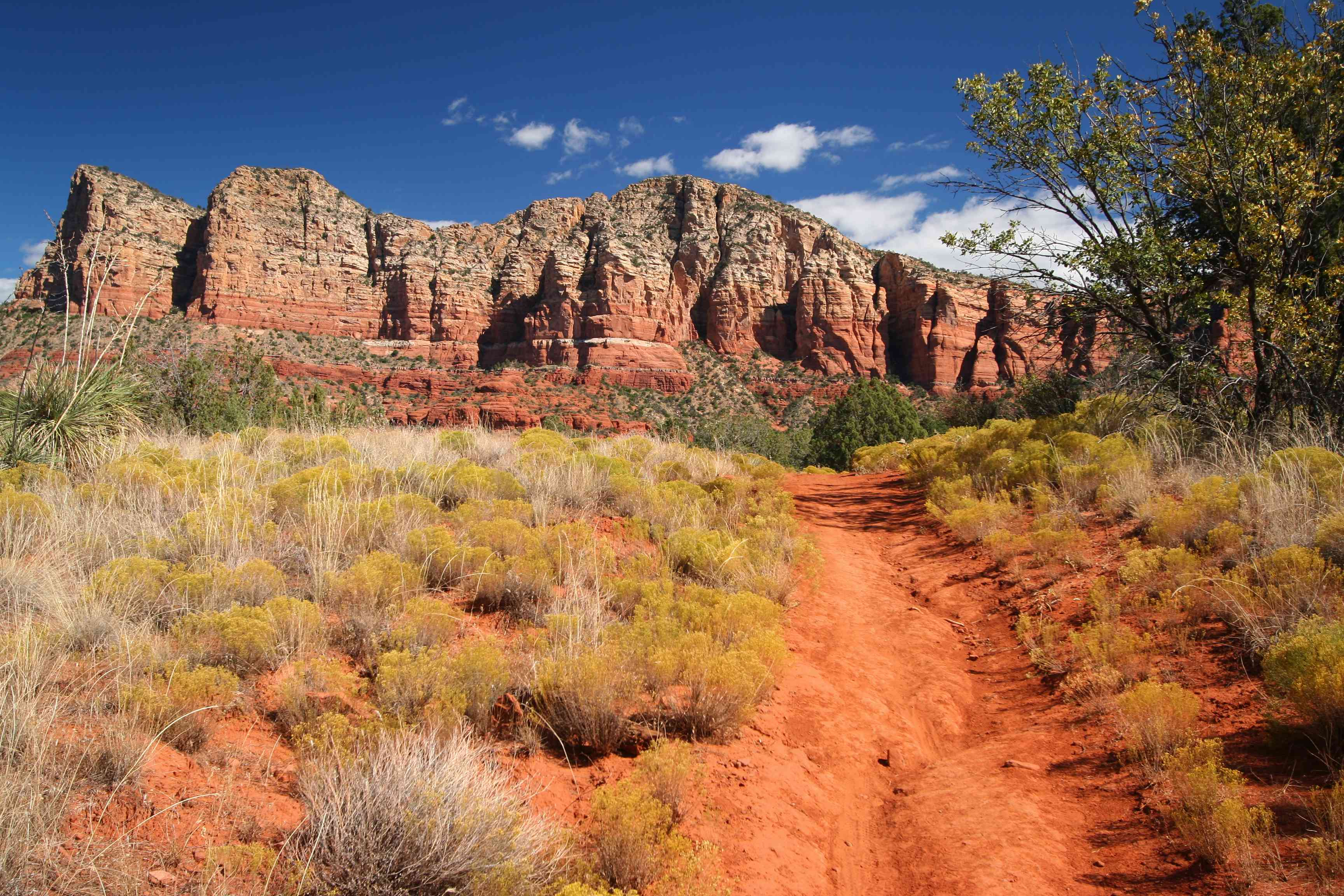 Courthouse Butte Loop