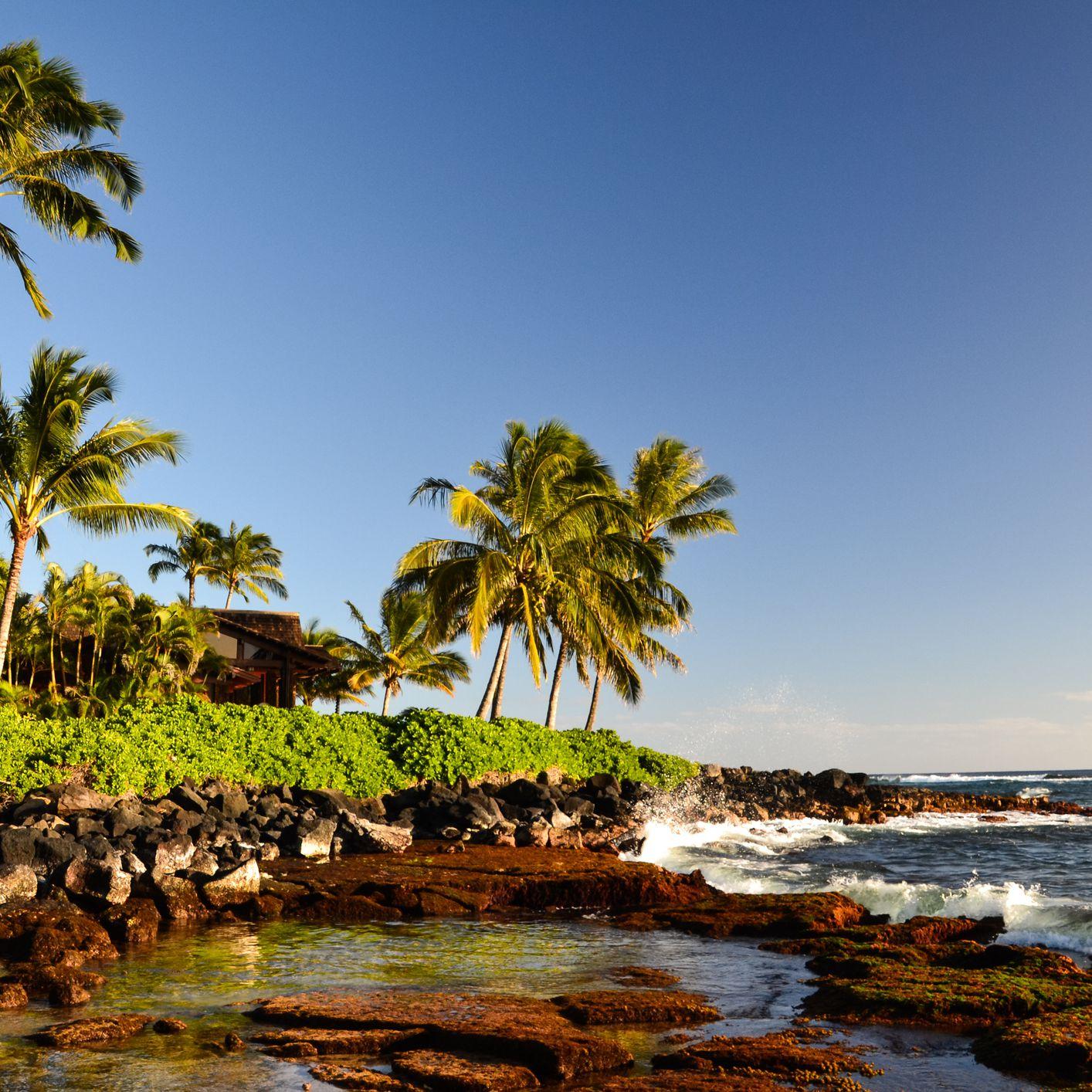 Where to Go Snorkeling on Kauai