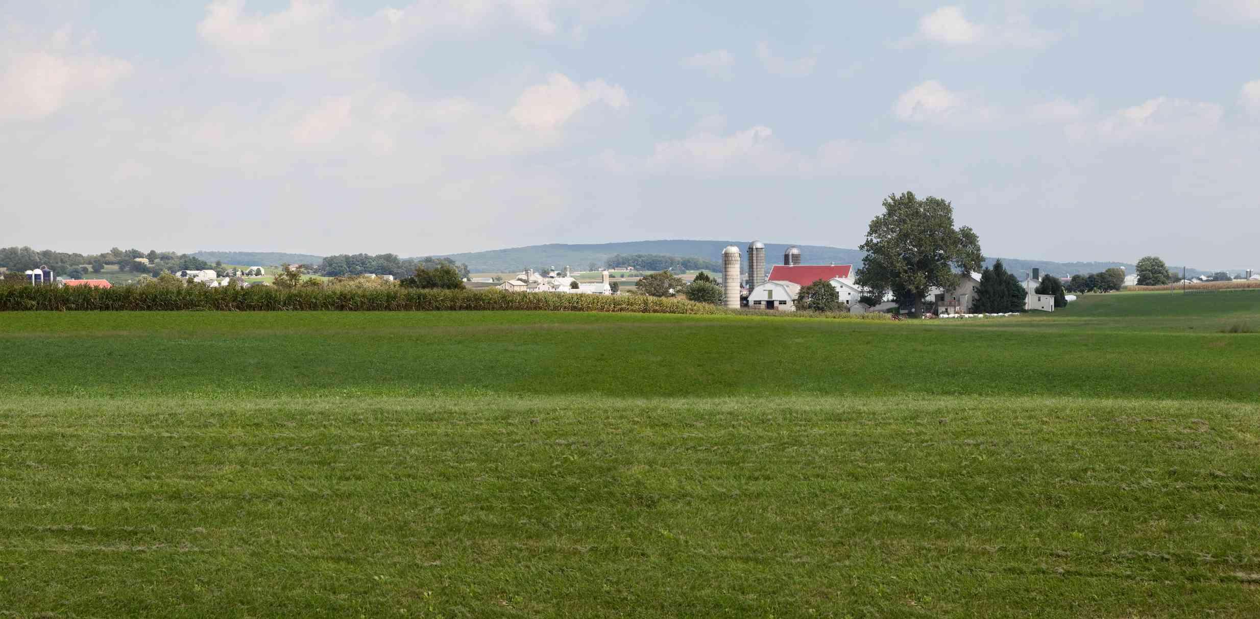 Farm in Lancaster, PA