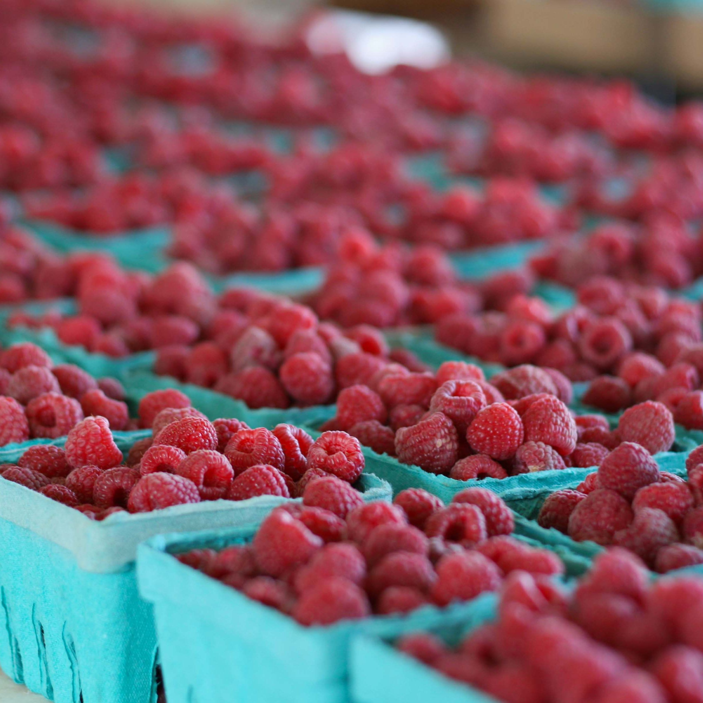 Farmers' Markets in Minneapolis and St. Paul