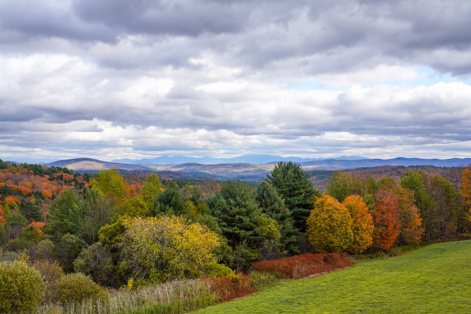Colorful fall trees in Vermont