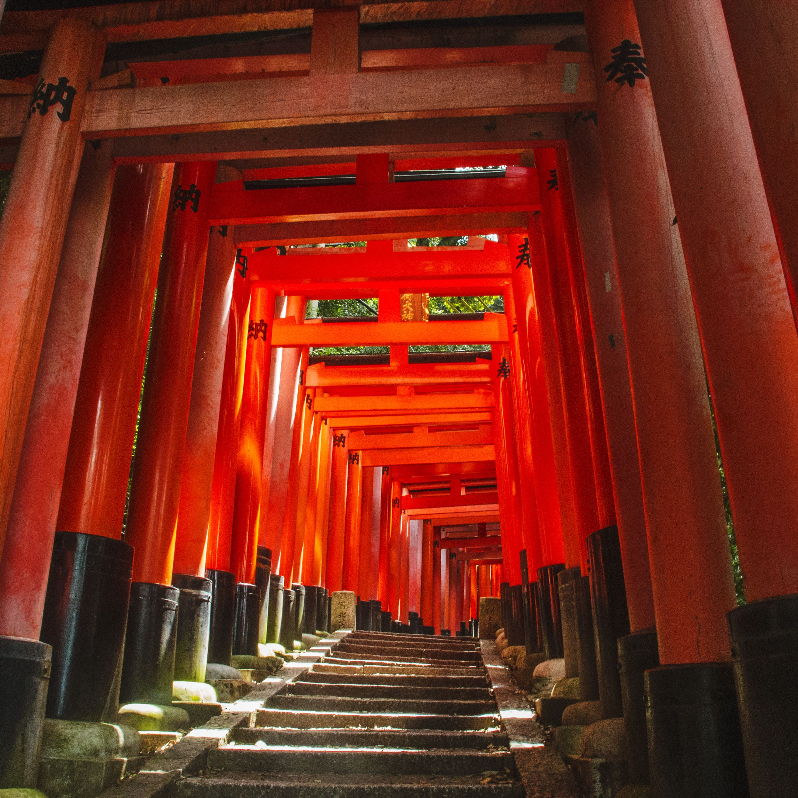 Japan's Fushimi Inari Shrine: The Complete Guide