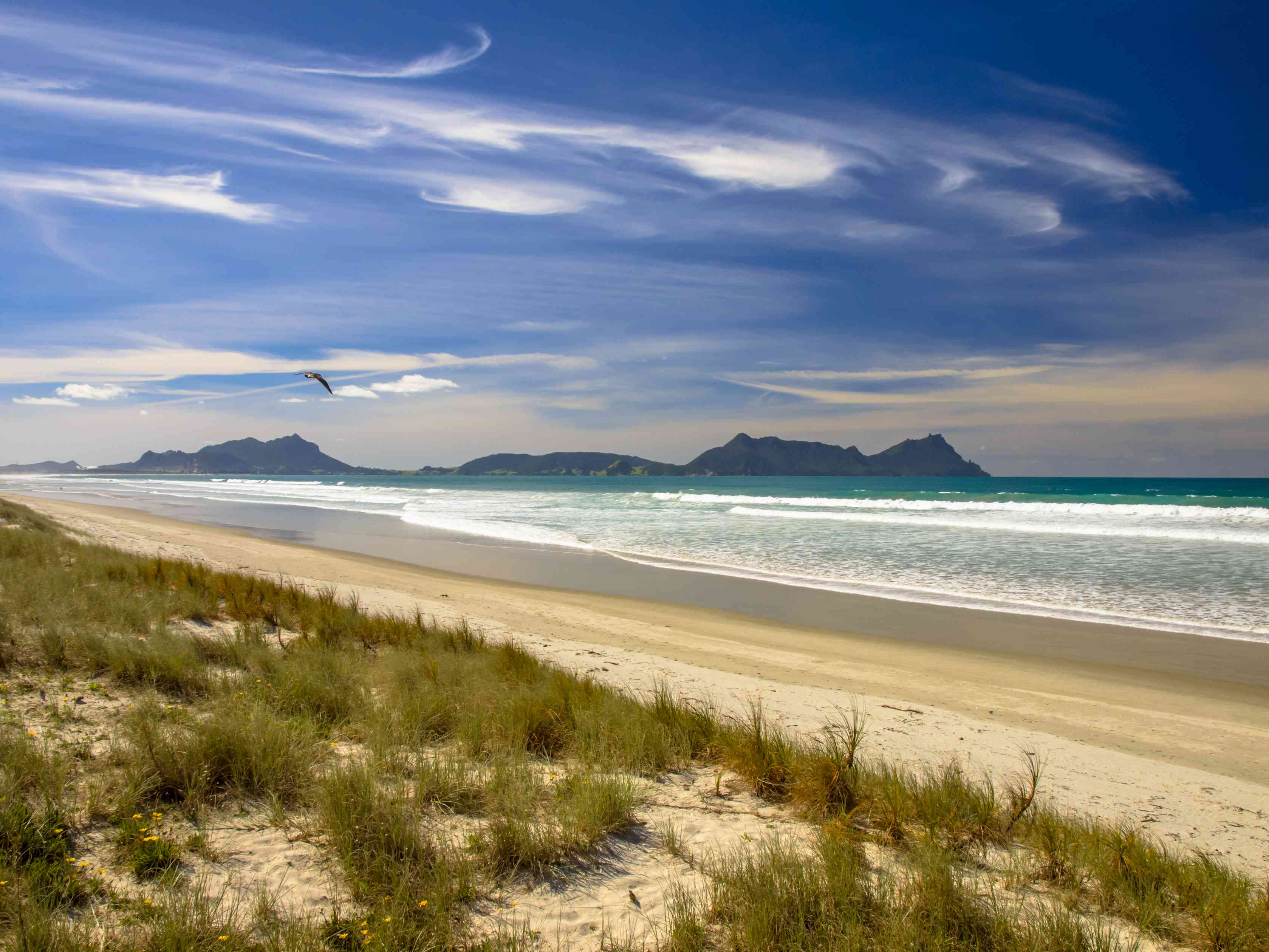 blue sky with swirling clouds above waves breaking on a golden sand beach with grass in foreground