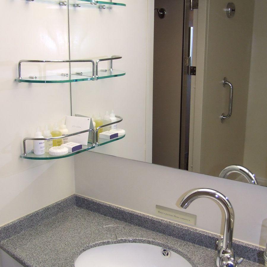 Bath in the Eurodam Deluxe Verandah Oceanview Stateroom #6014